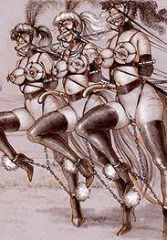A wild ride - Tim's Ponygirls by Tim Richards